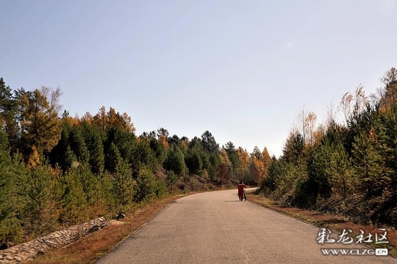 这里的寒温带大陆性季风气候造就了森林一年四季五彩斑斓的自然景观