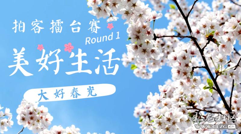 拍客擂台赛Round 1丨美好生活,大好春光