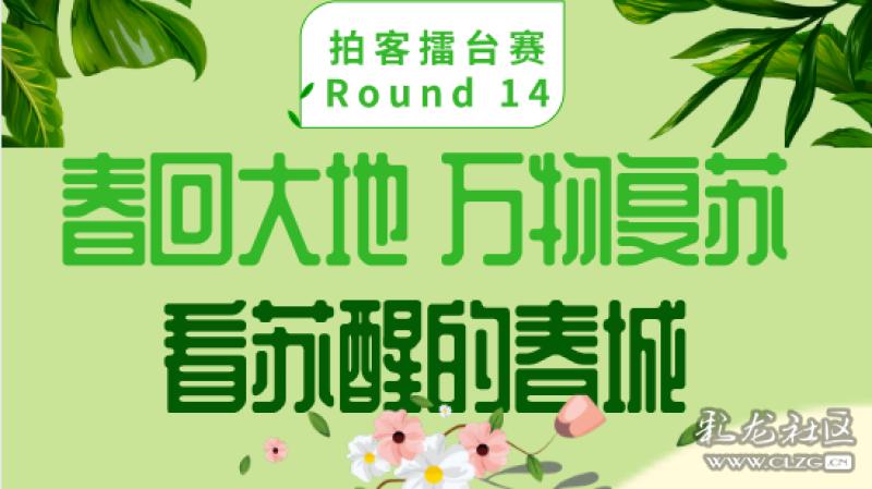 拍客擂台赛Round 14丨春回大地 万物复苏 看苏醒的春城