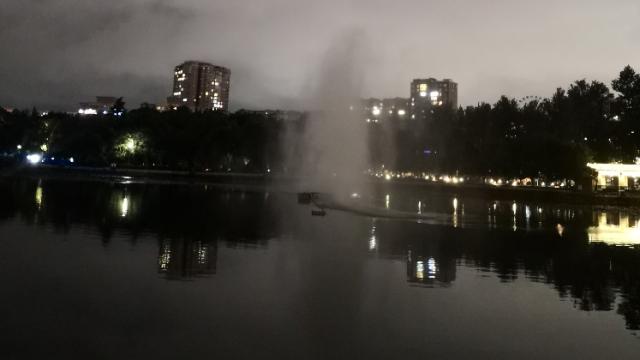 昨晚散步翠湖,湖面突然出现不知是啥的东东,好看却又不知道是啥,求解🤪