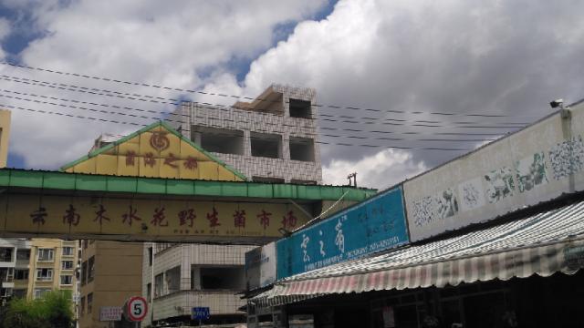 云南木水花野生菌交易市场随拍